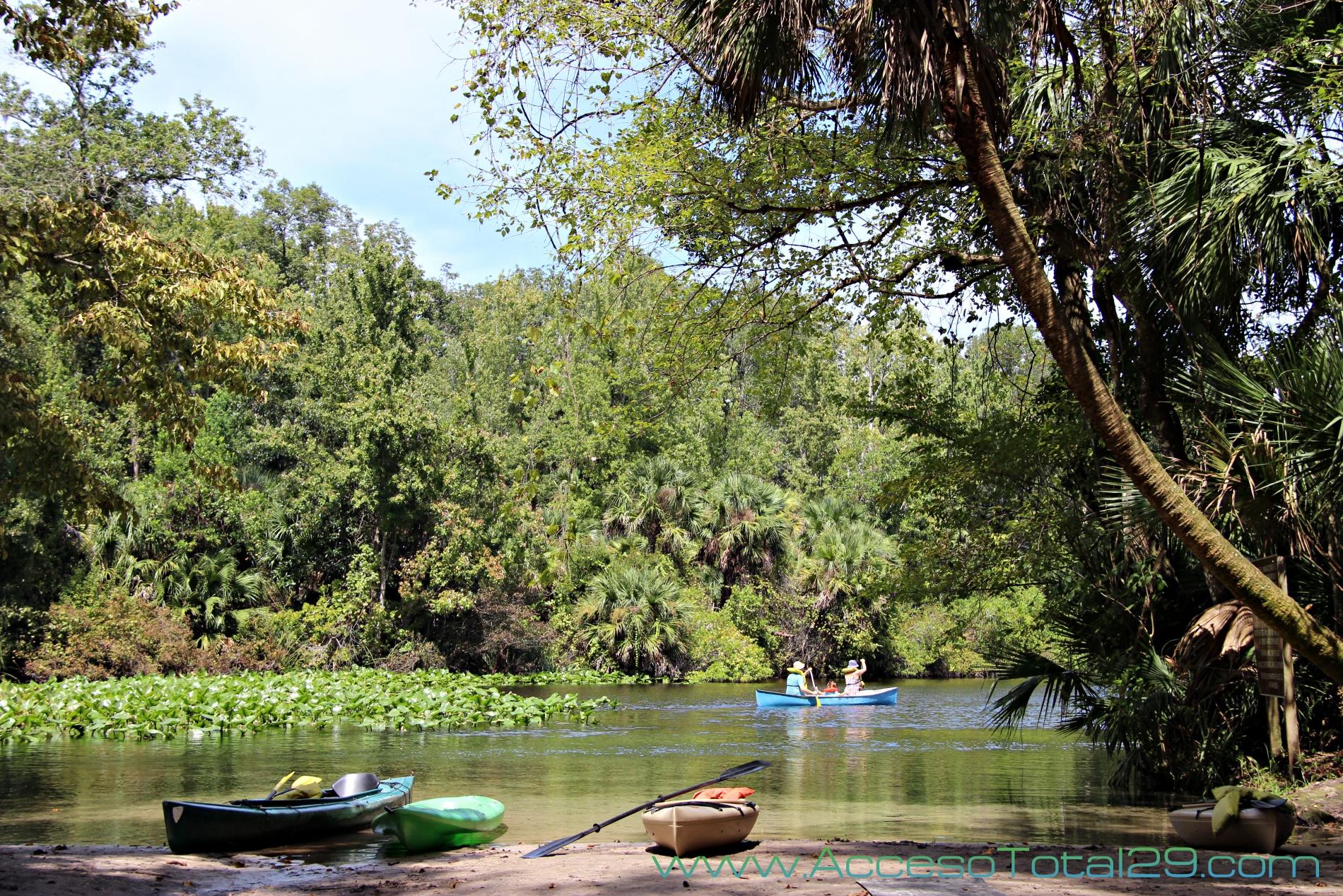 Kayak en Wekiwa Springs State Park (Florida)